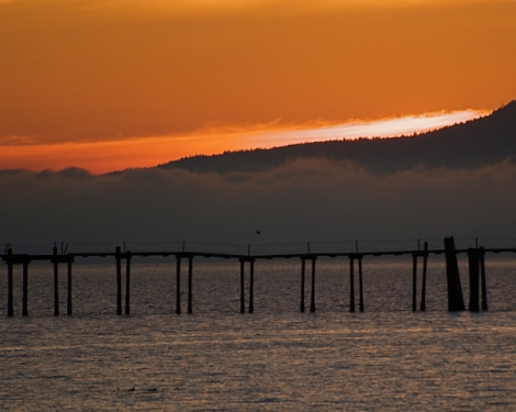 Bellingham Winter Sunset ©2009 Carole May