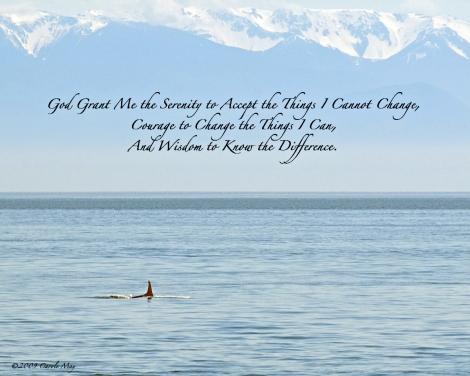 Serenity ©2009 Carole May
