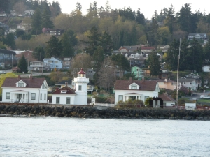 Whale Watching Mukilteo