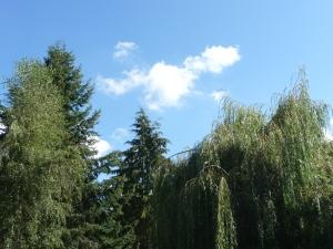 Sept 17 2009 Sky