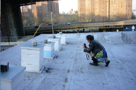 Sarah-Kate Lynch photographing bee hives on a rooftop in New York City.