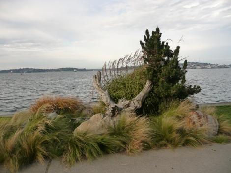 Beachfront overlooking Elliott Bay