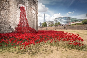 Spill of poppies from the Tower of London