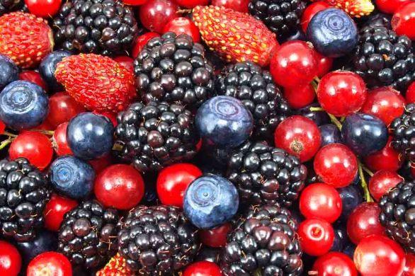 Image result for cranberries blueberries raspberries blackberries