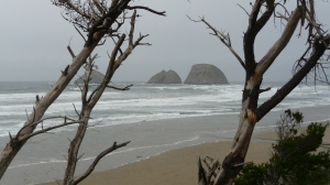 Three Arches at Oceanside, OR Photo credit: Shannon Wilson