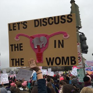 This protest sign from the Washington, DC march was taken by Jennifer Lane.